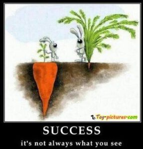 visiblesuccess